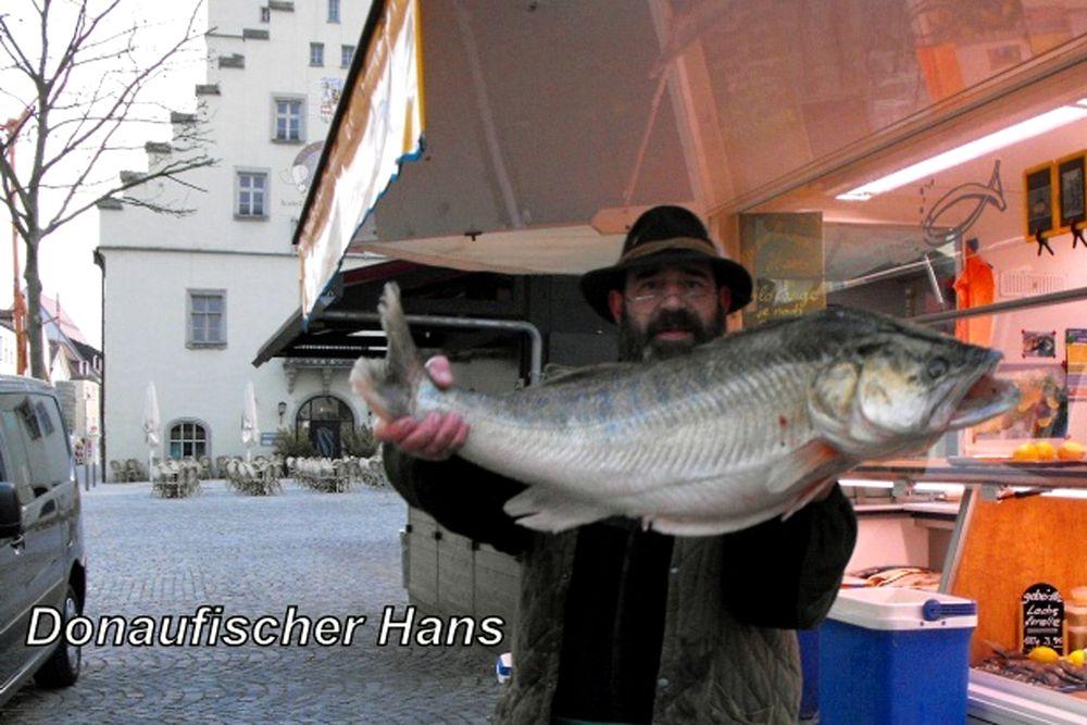 Donau und Donaufischer
