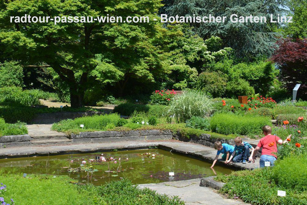 Ботанический сад в Линце